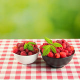 Fresh raspberry fruits. And green leaf Stock Photography