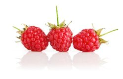 Fresh raspberry fruits with green leaves Stock Image