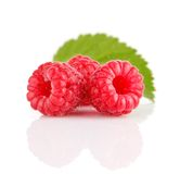 Fresh raspberry fruits with green leaves Royalty Free Stock Image