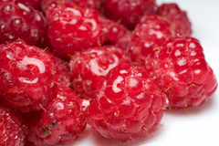 Fresh raspberry for fun and pleasure Stock Images
