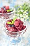 Fresh raspberry granita and mint (blueberry, berries). Homemade ice-cream Stock Images