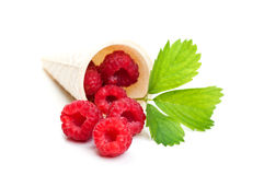 Fresh raspberry and green leaf Royalty Free Stock Photography