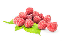 Fresh raspberry with green leaf on white background.  Royalty Free Stock Photo