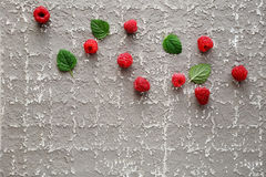 Fresh raspberry and green leaves. Fruits Stock Images