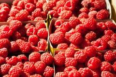 Fresh raspberry. Healthy organic food Stock Photo