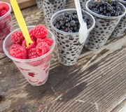Fresh raspberry and huckleberry forest fruits Royalty Free Stock Photos