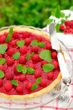 Fresh Raspberry Jelly Tart, copy space for your text, selective. Fresh Raspberry Jelly Tart, copy space for your text Stock Images