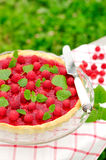 Fresh Raspberry Jelly Tart, copy space for your text, selective focus Stock Image