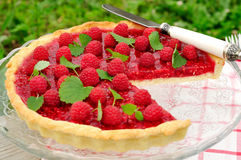 Fresh Raspberry Jelly Tart, copy space for your text, selective focus Stock Photo