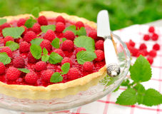Fresh Raspberry Jelly Tart, selective focus Royalty Free Stock Image