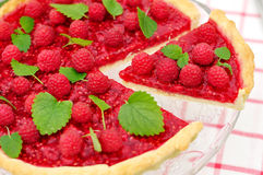 Fresh Raspberry Jelly Tart, selective focus Royalty Free Stock Photo