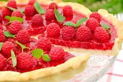 Fresh Raspberry Jelly Tart, selective focus. Fresh Raspberry Jelly Tart with Melissa Stock Photo