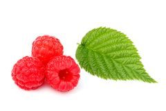 Fresh raspberry with leaf isolated. Fresh raspberry with leaf isolated on white background Stock Photography