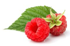 Fresh raspberry with leaves closeup isolated. Fresh raspberry with leaves closeup isolated on white background Royalty Free Stock Image