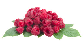 Fresh raspberry with leaves Royalty Free Stock Image