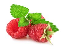Fresh Raspberry With Mint Leaf Isolated on White Background in Closeup. Fresh Raspberry With Mint Leaf Isolated on White Background in Close-up Stock Image