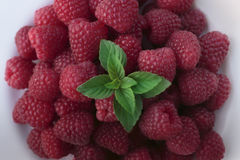 Fresh raspberry. With a mint leaf on white plate Royalty Free Stock Images