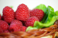 Fresh raspberry Royalty Free Stock Photography