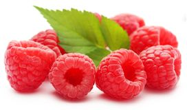 Fresh Raspberry. Over white background Royalty Free Stock Photos