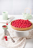 Fresh raspberry and pistachio cream tart. On a white textile background Royalty Free Stock Photos