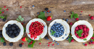 Fresh raspberry, red carrunt and blueberry. Row of fresh raspberry, red carrunt, blackberrry and blueberry  in cups with fresh leaves, top view Royalty Free Stock Photo