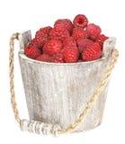 Fresh raspberry. Ripe gooseberry in wooden bucket on white Fresh raspberry in the wooden bucket Stock Photos