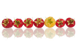Fresh raspberry. Rowed with reflection  on white background Stock Photos