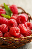 Fresh raspberry. In rustic basket Stock Photography