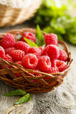 Fresh raspberry Stock Image