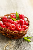 Fresh raspberry. In rustic basket Stock Image