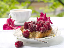Fresh raspberry tart. A fresh raspberry tart on a plate and cup of coffee in background Stock Image