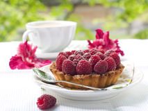 Fresh raspberry tart. A fresh raspberry tart on a plate and cup of coffee in background Stock Photos