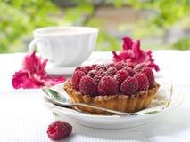 Fresh raspberry tart Stock Photos
