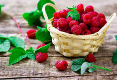 Fresh raspberry in to the basket Royalty Free Stock Images