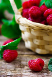 Fresh raspberry in to the basket. Style rustic. selective focus Stock Images