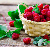 Fresh raspberry in to the basket. Style rustic. selective focus Royalty Free Stock Image