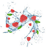 Fresh raspberry with water splash Royalty Free Stock Photos