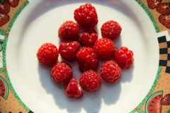 Fresh raspberry in a white bowl. Close-up Fresh raspberry in a white bowl Stock Image