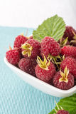 Fresh raspberry. In a white bowl on wooden table Stock Image