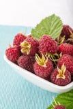 Fresh raspberry Stock Image