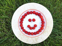 Fresh raspberry in a white plate. On green grass, summer time, round smile shape Stock Images