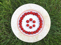 Fresh raspberry in a white plate. On green grass, summer time, round smile shape Royalty Free Stock Image