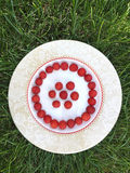 Fresh raspberry in a white plate. On green grass, summer time, round smile shape Royalty Free Stock Photo