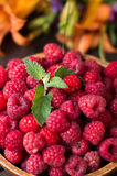 Fresh raspberry in wooden plate. Rural background. Close-up Royalty Free Stock Photography