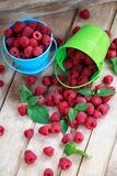 Fresh raspberry on a wooden table. Fruit-organic-healthy-berries Stock Images