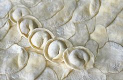 Fresh ravioli folded in a row on the rolled out dough. With flour Royalty Free Stock Photos