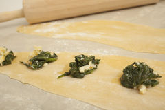 Fresh Ravioli Pasta. Making of homemade fresh spinach ravioli on background Royalty Free Stock Images