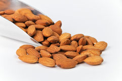 Fresh Raw Almonds in Aluminum Scoop on White Stock Photography
