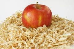 Fresh raw apple. On sawdust Stock Photo