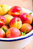 Fresh raw apricots. In a bowl Royalty Free Stock Photography